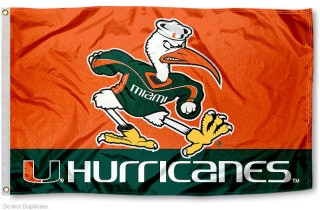 Sebastian the Ibis.  University of Miami mascot since 1957.
