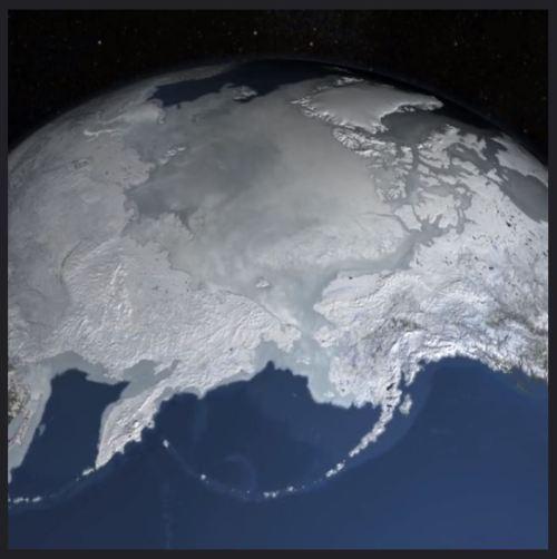 Arctic Sea Ice Video