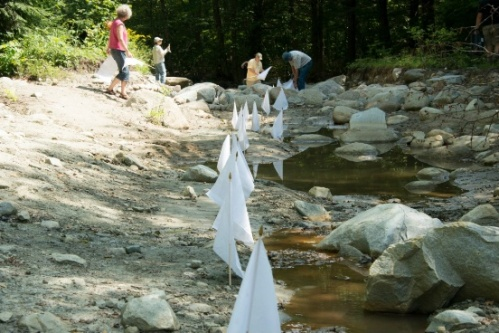 "The White Mountains after Hurricane Irene: Xavier Cortada, ""Surrender at Tunnel Brook,"" 2012 (http://cortada.com/2012/TunnelBrook/)"